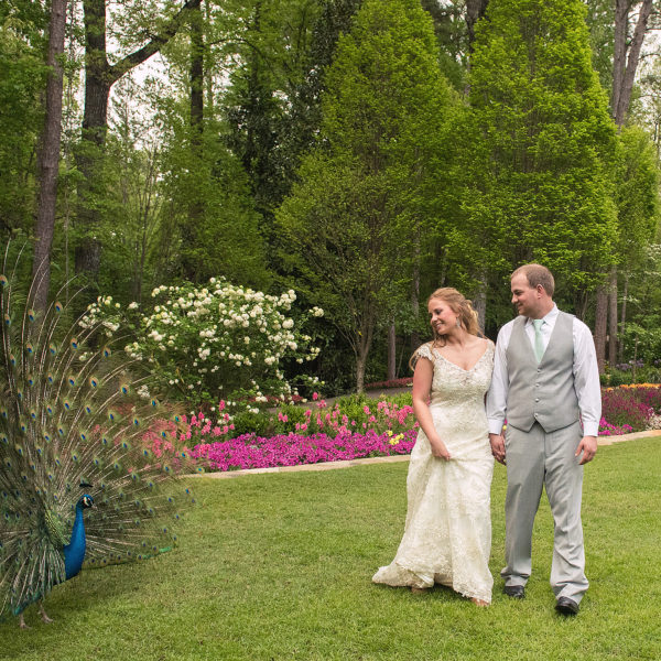 Garvan Woodland Gardens, Hot Springs, Arkansas Wedding
